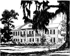 plantation-years