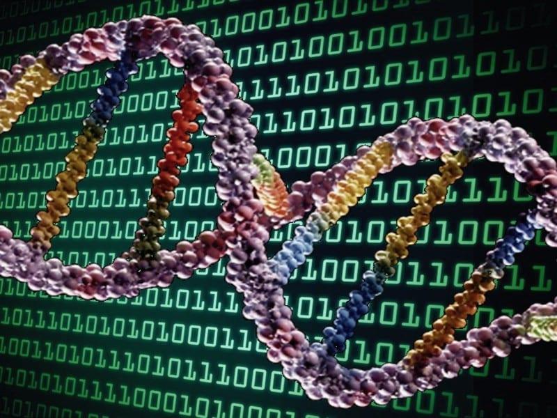 THE EVENT ORIGINATOR WROTE THE DNA DIGITAL CODE
